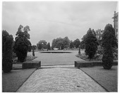 view [Chatsworth Estate]: one of the formal gardens. digital asset: [Chatsworth Estate] [glass negative]: one of the formal gardens.