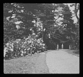 view [Dropmore]: rhododendrons and specimen trees along a curving walkway, with GCA tour members. digital asset: [Dropmore] [lantern slide]: rhododendrons and specimen trees along a curving walkway, with GCA tour members.