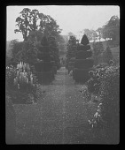 view [Compton Wynyates]: grass walkway in the gardens, with perennials and topiary work. digital asset: [Compton Wynyates] [lantern slide]: grass walkway in the gardens, with perennials and topiary work.
