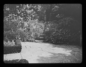 view [Hidcote Manor Garden]: the Maple Garden. digital asset: [Hidcote Manor Garden] [lantern slide] the Maple Garden.