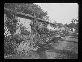 view [Unidentified Location]: a long garden border backed by a wall, possibly at Luggershill (now known as Luggers Hall) in Broadway. digital asset: [Unidentified Location] [lantern slide]: a long garden border backed by a wall, possibly at Luggershill (now known as Luggers Hall) in Broadway.