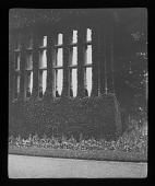 view [Batsford Park]: a window at Batsford House surrounded by climbing plants. digital asset: [Batsford Park] [lantern slide]: a window at Batsford House surrounded by climbing plants.