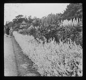 view [Batsford Park]: perennial garden border on a terrace, with a pyramidal roofed garden house in the background. digital asset: [Batsford Park] [lantern slide]: perennial garden border on a terrace, with a pyramidal roofed garden house in the background.
