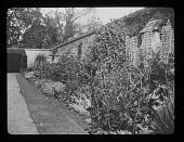 view [Sudeley Castle]: perennial border in the walled rose garden. digital asset: [Sudeley Castle] [lantern slide]: perennial border in the walled rose garden.