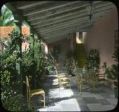 view Whitney Garden [FL] digital asset: Whitney Garden [FL]: [between 1914 and 1949?]