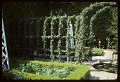 view [Dayton Garden]: the hidden garden. digital asset: [Dayton Garden]: the hidden garden.: 1996 Mar.
