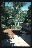 view [Untitled Garden]: southwest patio. digital asset: [Untitled Garden]: southwest patio.: 1996 May. 9.