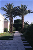 view [Untitled Garden in Palm Beach, Florida]: entry walk towards front of house. digital asset: [Untitled Garden in Palm Beach, Florida]: entry walk towards front of house.: 2000 May.
