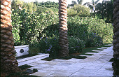 view [Untitled Garden in Palm Beach, Florida]: small fountain across from front door. digital asset: [Untitled Garden in Palm Beach, Florida]: small fountain across from front door.: 2000 May.