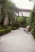 view [Marshall Garden]: stone paved seating area next to guest house with ficus and boxwood hedges and two ficus trees. digital asset: [Marshall Garden]: stone paved seating area next to guest house with ficus and boxwood hedges and two ficus trees.: 2006.