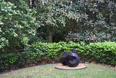 view [Haskell Gardens]: Clement Meadmore's sculpture, 'Fling,' surrounded by dwarf ligustrum hedge with ligustrum and magnolia trees behind. digital asset: [Haskell Gardens]: Clement Meadmore's sculpture, 'Fling,' surrounded by dwarf ligustrum hedge with ligustrum and magnolia trees behind.: 2015 Apr.