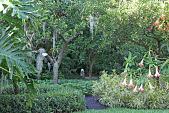 view [Villa Filipponi]: a look into the garden from the lawn. digital asset: [Villa Filipponi]: a look into the garden from the lawn.: 2011 May.