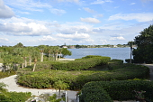 view [A Gulf Seaside Garden]: View east from the back stairs of the house and terrace over the bayou and the Intracoastal Waterway with the Jasmine hedge and many sabal palms on the north edge of the property. digital asset: [A Gulf Seaside Garden]: View east from the back stairs of the house and terrace over the bayou and the Intracoastal Waterway with the Jasmine hedge and many sabal palms on the north edge of the property.: 2015 Nov.