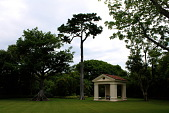 view [Palm Beach Garden]: Specimen trees near the dining pavilion include two kapok trees on the left and an African tulip tree on the right. digital asset: [Palm Beach Garden]: Specimen trees near the dining pavilion include two kapok trees on the left and an African tulip tree on the right.: 2015 May.