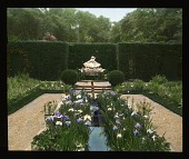 view [Bagatelle]: iris, water feature, and hedge. digital asset: [Bagatelle]: iris, water feature, and hedge.: 1936 Jul.