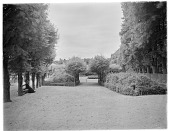 view [Fontainebleau]: pleached trees and allées near the formal gardens, with what appears to be a performance platform or bandstand visible in the distance. digital asset: [Fontainebleau] [glass negative]: pleached trees and allées near the formal gardens, with what appears to be a performance platform or bandstand visible in the distance.