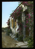 view [Miscellaneous Sites in France, Series 3]: a rose-covered cottage or outbuilding in an unidentified location, probably in Versailles. digital asset: [Miscellaneous Sites in France, Series 3]: a rose-covered cottage or outbuilding in an unidentified location, probably in Versailles.: 1936.