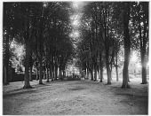 view [Miscellaneous Sites in Lisieux, Normandy, and Vicinity]: allée of trees and bandstand in the Jardin de l'évêche in Lisieux, Normandy, with the former Bishop's Palace in the background. digital asset: [Miscellaneous Sites in Lisieux, Normandy, and Vicinity] [glass negative]: allée of trees and bandstand in the Jardin de l'évêche in Lisieux, Normandy, with the former Bishop's Palace in the background.