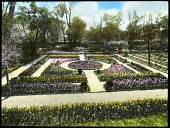 view [Chafee House]: overview of formal parterre garden with hedge in foreground. digital asset: [Chafee House]: overview of formal parterre garden with hedge in foreground.: [between 1914 and 1949?]