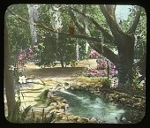 view [White Garden]: frog fountain beside naturalistic pond under trees. digital asset: [White Garden]: frog fountain beside naturalistic pond under trees.: [between 1914 and 1949?]