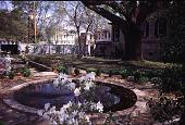 view Untitled Garden in Savannah, Georgia digital asset: Untitled Garden in Savannah, Georgia: 04/10/1996