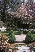 view Untitled Garden in Atlanta, Georgia digital asset: Untitled Garden in Atlanta, Georgia: 1996 Apr.