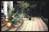 view [Heard House]: back porch. digital asset: [Heard House]: back porch.: 1997 Nov.