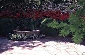 view [Hillside Garden]: close-up of the pond, anchored by boxwood. digital asset: [Hillside Garden]: close-up of the pond, anchored by boxwood.: 1999 May.