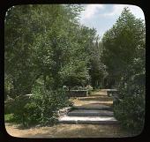 view [Unidentified Garden in Unknown Location]: stone steps to a garden walk. digital asset: [Unidentified Garden in Unknown Location]: stone steps to a garden walk.: [between 1914 and 1949?]