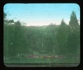 view [Unidentified garden in unknown location]: landscape. digital asset: [Unidentified garden in unknown location]: landscape.: [between 1915 and 1949?]