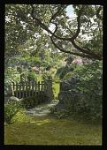 view [Francis Garden] digital asset: [Francis Garden]: [between 1914 and 1949?]