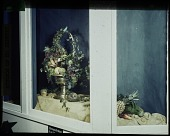 view [Miscellaneous Flower Arrangements]: an arrangement of fruits and vegetables in a display case. digital asset: [Miscellaneous Flower Arrangements]: an arrangement of fruits and vegetables in a display case.: [between 1914 and 1949?]