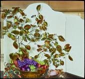 view [Miscellaneous Flower Arrangements]: an arrangement of fruits on display. digital asset: [Miscellaneous Flower Arrangements]: an arrangement of fruits on display.: [between 1914 and 1949?]