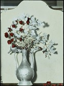 view [Miscellaneous Flower Arrangement]: a dried flower arrangment display of Chinese lantern and dried Lunaria in a decorative pitcher vase. digital asset: [Miscellaneous Flower Arrangement]: a dried flower arrangment display of Chinese lantern and dried Lunaria in a decorative pitcher vase.: [between 1914 and 1949?]