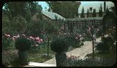 view Newell Garden digital asset: Newell Garden: [between 1914 and 1949?]