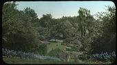 view Butler Garden digital asset: Butler Garden: [between 1914 and 1949?]