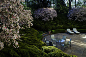 view [House in the Garden]: boxwood are shaped like clouds in the amphitheater garden that rises above a paving block patio. digital asset: [House in the Garden]: boxwood are shaped like clouds in the amphitheater garden that rises above a paving block patio.: 2011 May.
