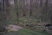view [Questover]: bridge, small pond and woodland garden in early spring. digital asset: [Questover]: bridge, small pond and woodland garden in early spring.: 2006.