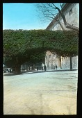 view Villa Medici: the villa and sculpted tree. digital asset: Villa Medici: the villa and sculpted tree.: [between 1915 and 1930]
