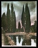view Villa Falconieri digital asset: Villa Falconieri: [between 1914 and 1949?]