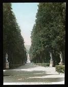 view Giardino Di Boboli digital asset: Giardino Di Boboli: [between 1914 and 1949?]