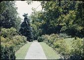 view Ferguson Garden digital asset: Ferguson Garden: [between 1914 and 1949?]