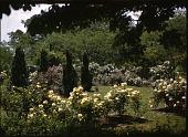 view Keiler Garden digital asset: Keiler Garden: 05/01/1949
