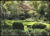view Wheeler Garden digital asset: Wheeler Garden: 04/01/1949
