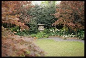 view [Boxwood Court]: the antique urn between Japanese maples at the rear of the garden. digital asset: [Boxwood Court]: the antique urn between Japanese maples at the rear of the garden.: 2003 Oct.