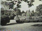 view Unidentified Garden in Unknown Location digital asset: Unidentified Garden in Unknown Location [slide]
