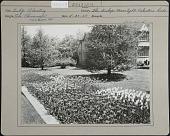 view [The Chimneys] digital asset: [The Chimneys] [photoprint]