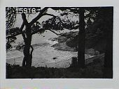 view [The Chimneys]: view of bay from a hill through trees. digital asset: [The Chimneys]: view of bay from a hill through trees.: [1930?]