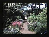 view [The Chimneys]: walkway through garden, flowers in bloom, leading to arbors at different points along the path. digital asset: [The Chimneys]: walkway through garden, flowers in bloom, leading to arbors at different points along the path.: 1940.