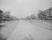 view [Beacon Street & Commonwealth Avenue]: Commonwealth Avenue and its mall east of Kenmore, looking toward Charlesgate Park. digital asset: [Beacon Street & Commonwealth Avenue] [glass negative]: Commonwealth Avenue and its mall east of Kenmore, looking toward Charlesgate Park.